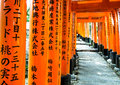Torii gates at fushimi inari shrine perspective of kyoto japan Stock Photo