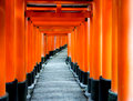Torii gates at fushimi inari shrine perspective of kyoto japan Royalty Free Stock Image