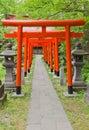 Torii gates of Hachiman Shinto Shrine, Akita, Japan Royalty Free Stock Photo