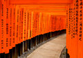 Torii gates in kyoto tori at the fushimi inari shrine japan Royalty Free Stock Photography