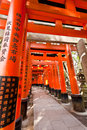 Torii tunnal at fushimi inari taisha shrine orange gates in kyoto japan Royalty Free Stock Photo