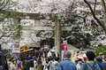 Torii in ueno and people park Royalty Free Stock Images
