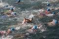 Toro loco valencia triathlon spain september women athletes in the swim section of the women s Royalty Free Stock Photo