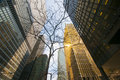 Toronto financial buildings Royalty Free Stock Photo