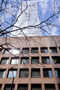 Toronto highrise office building detail of with tree branches in downtown Stock Photography