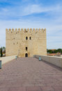 Torre calahorra and roman bridge cordoba tower of with the andalusia spain Royalty Free Stock Photography