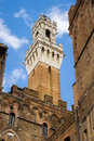 Torre del mangia siena view from the south side of the bell tower and the city hall palace and palazzo pubblico in italy portrait Royalty Free Stock Photography