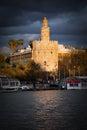 Torre Del Oro In Seville At Su...
