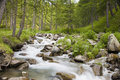 Torrent in the Alpes Stock Photography