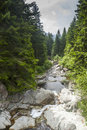 Torrent in Val Brembana Royalty Free Stock Photo