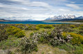 Torres del Paine National Park, Chile Stock Photo
