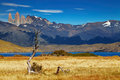Torres del paine national park chile laguna azul patagonia Royalty Free Stock Photo