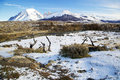 Torres del paine national park in chile in the winter Stock Images