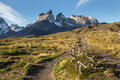 Torresdel paine torres del chile walking track Royalty Free Stock Photo