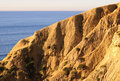 Torrey Pines Beach (Southern California) Royalty Free Stock Photo