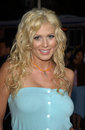 Torrie wilson playboy model actress at the world premiere of godsend at the chinese theatre hollywood april Stock Photo