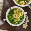 Tortellini Soup with Spinach Royalty Free Stock Photo