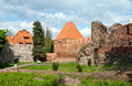 Torun, ruins of castle Royalty Free Stock Photo