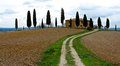Toscana landscape with house and cypress Royalty Free Stock Images