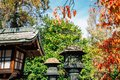Toshogu shrine Japanese traditional lamp with autumn leaves at Ueno park in Tokyo, Japan Royalty Free Stock Photo