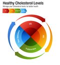 Total Blood Cholesterol HDL LDL Triglycerides Chart Royalty Free Stock Photo