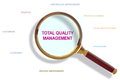 Total quality management basic principles of methodology Royalty Free Stock Images