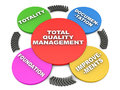 Total quality management tqm or concept the cycle of tqm in d over white background Stock Image