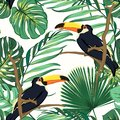 Toucan birds natural habitat in exotic tropical jungle rainforest fern greenery. Vivid bright green seamless pattern.