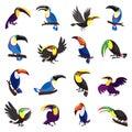 Toucan icons set, cartoon style