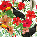 Toucan leaves and flowers seamless pattern white background