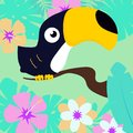 Toucan on tropical background Royalty Free Stock Photo