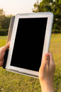 Touch screen tablet female hand holding digital in the green field of grass Stock Photos
