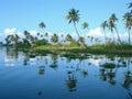 Tourism in India, lush vegetation in Kerala Royalty Free Stock Photos