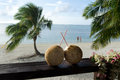 Tourist in aitutaki lagoon cook islands two coconuts with straws on bungalow balcony with couple of on honeymoon vacation the Royalty Free Stock Photography