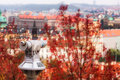 Tourist binocular with old town and red leaves background prague czech republic Royalty Free Stock Images