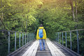 Tourist man walking across wooden bridge Royalty Free Stock Photo