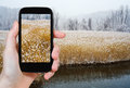 Tourist photographs of hudson river in winter travel concept takes picture rushy riverbank and frozen trees on smartphone usa Stock Photo