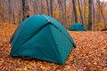 Tourist tents in forest Stock Photography