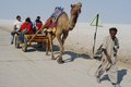 Tourist travelling in India on a cart pulled by camel