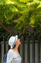 Tourist woman in botanical garden with white hat and backpack looking at plants and trees Stock Image