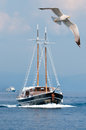 Touristic boat follows seagull aegean sea greece Royalty Free Stock Image