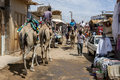 Tourists aboard camels in the nubian village of garb sohel in the aswan region of egypt weave their way through a street Stock Photo