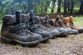 Tourists boots in forest Royalty Free Stock Photo