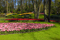Tourists and colored tulips in spring in the Keukenhof Park, Net Royalty Free Stock Photo