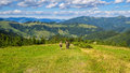 Tourists descend from the mountains to the valley, Carpathians, Ukraine, Nature landscape. Royalty Free Stock Photo