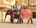 Tourists on elephants in Jaipur fort India Stock Photos