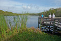 Tourists enjoying view of small lake on viewing platform in florida six miles cypress slough preserve fort myers south is a acre Stock Photo