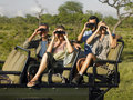 Tourists in jeep looking through binoculars group of sitting and Royalty Free Stock Image
