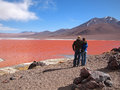Tourists at the red lagoon young tourist couple admiring or laguna colorada on altiplano near uyuni inside eduardo avaroa national Royalty Free Stock Images