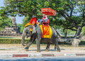 Tourists ride on an elephant in the Historical Park Royalty Free Stock Photo